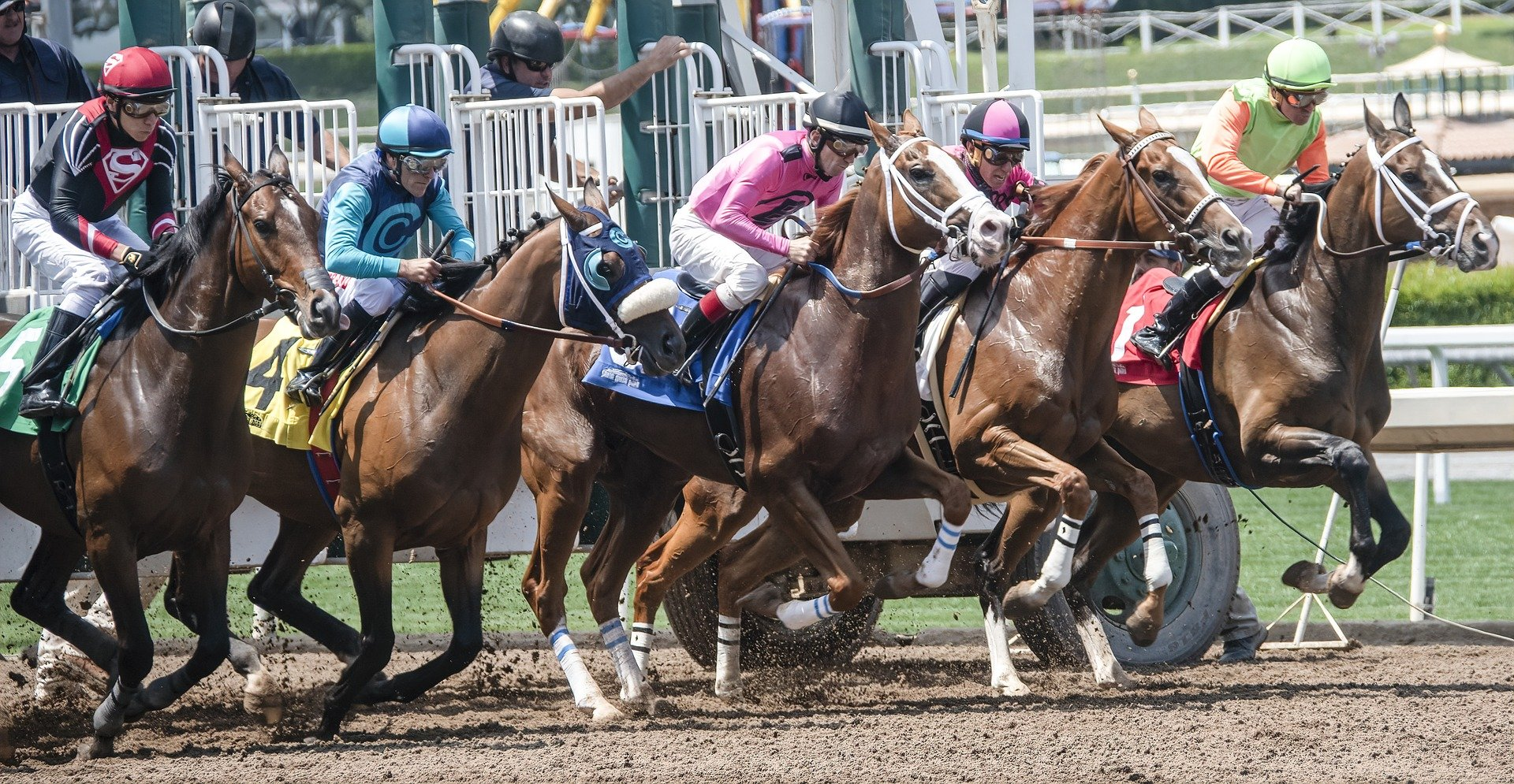 How to win at horse racing – A beginner's guide