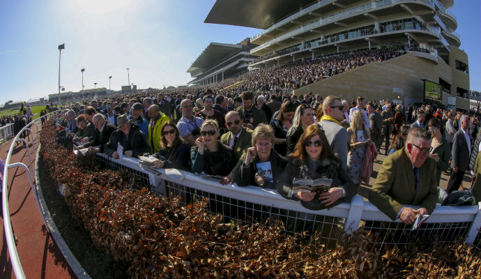 Hidden Truths/Secrets About The Cheltenham Festival By The racing?