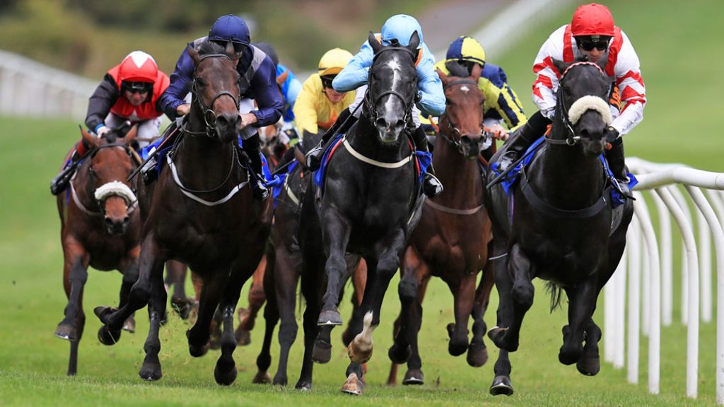 Sunday 22nd March: Lucky 15 Most Backed Horses