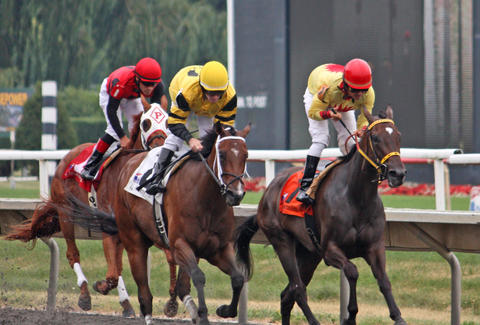 How do you win big money on horse racing?