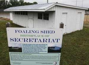 Famous foaling shed. Photo courtesy of The Meadow.