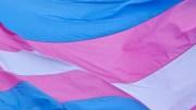 Transgender Women