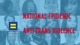 transgender epidemic