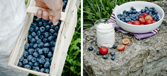 Food Art, Blueberries and Friends, by Meeta Khurana Wolff, The Rambling Epicure