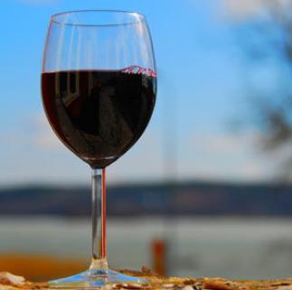 Focused on wine