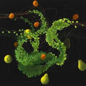 Still Life with Pears, Apricots and Grapes III, by Mia Brownell, http://www.miabrownell.com/