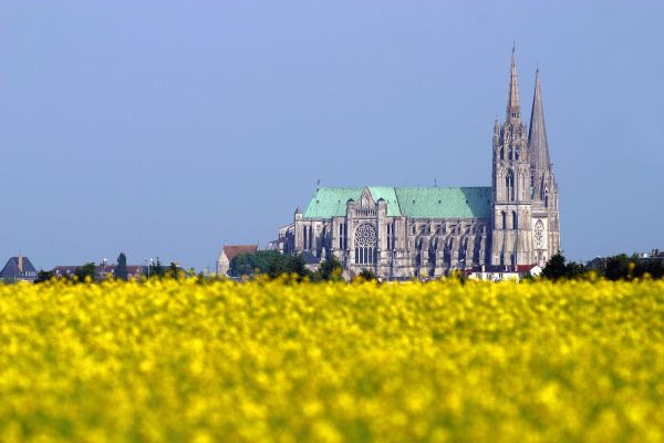 Chartres Cathedral fields of colza rapeseed