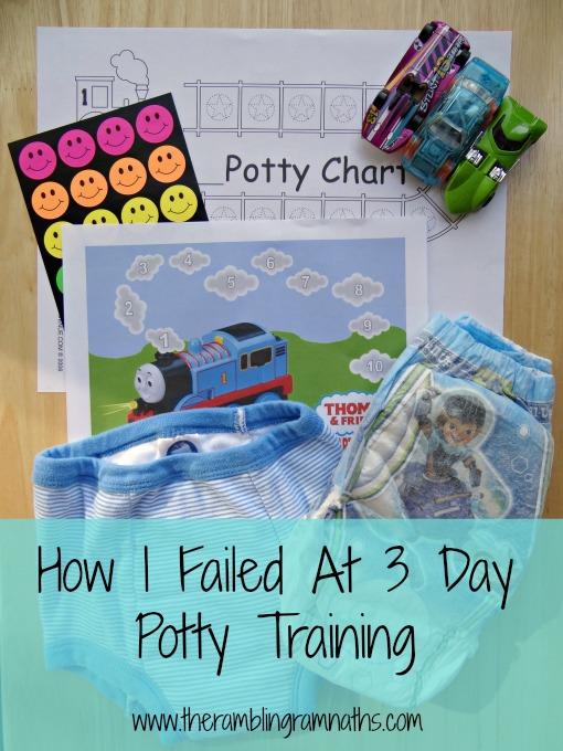 Three Day Potty Training?
