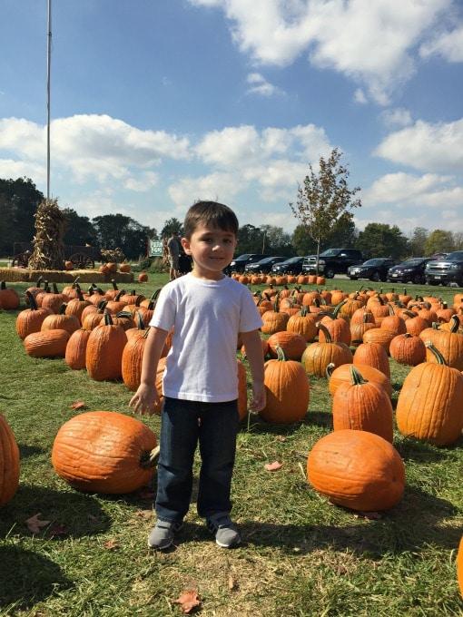pumpkin-patch-16