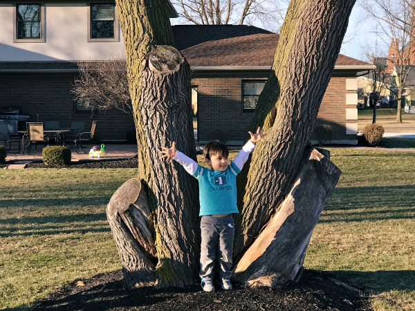 February Family Highlights
