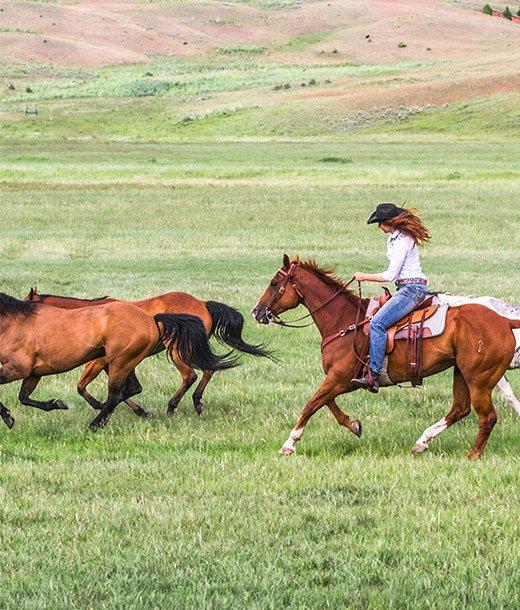 Luxury Vacation  Horseback Riding  The Ranch at Rock Creek