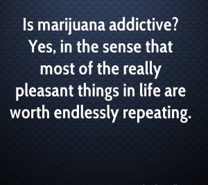 Doctors Quotes Wallpapers Interesting Funny Marijuana Quotes