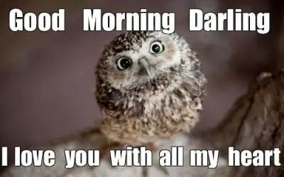 Good Morning I Love You Meme