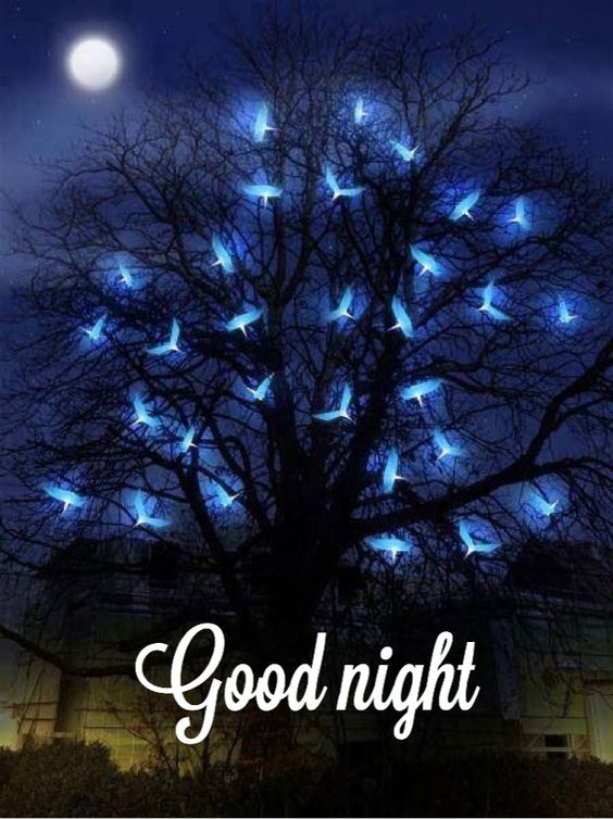 N8 Wallpapers Quotes 70 Beautiful Good Night Images Pictures And More