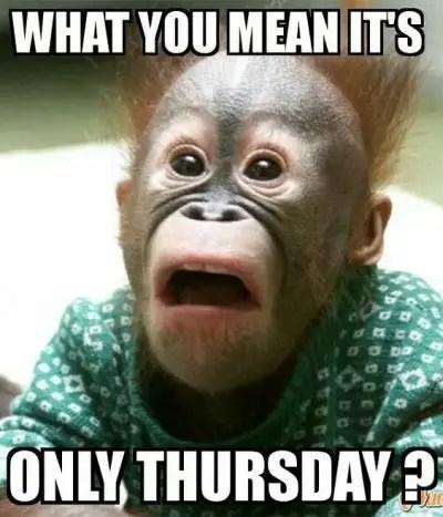 Thursday Meme Pictures