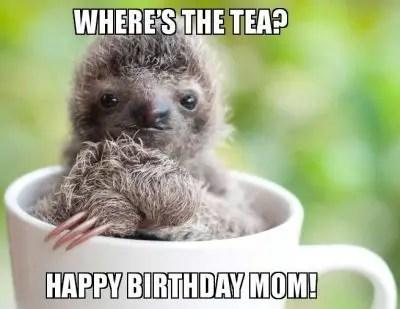 Happy Birthday Mom Tea Memes