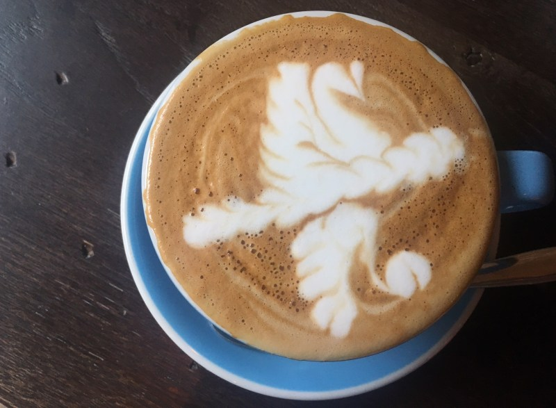 A swan on water drawn onto coffee with foam