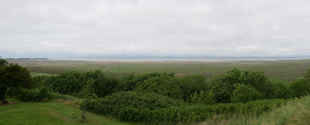 Panoramic view over the salt marshes