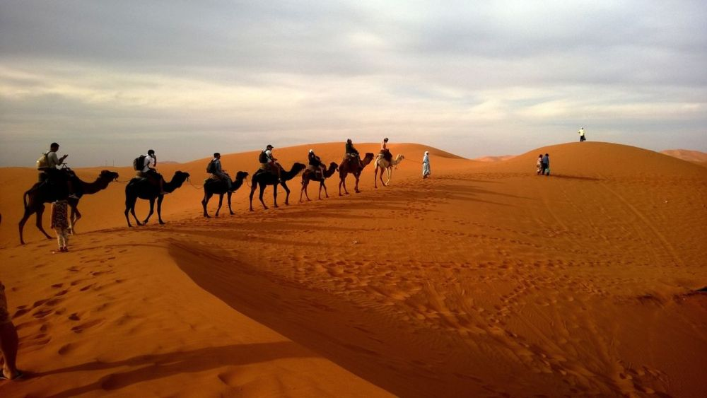 Riding camels through the desert is one of the top things to do in Doha