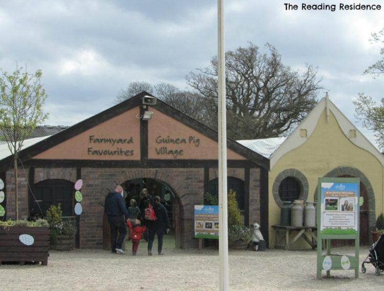 Hatton Adventureland farmyard favourites