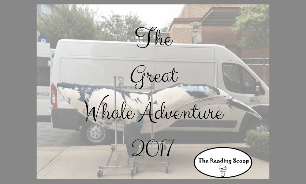 The Great Whale Adventure 2017, Michelle Nelson-Schmidt, Cordelia, Beatrice