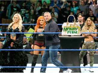 Money In the Bank - Purse