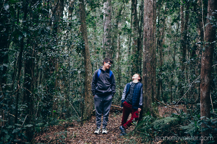 A walk in the Knysna forest and Millwood mine