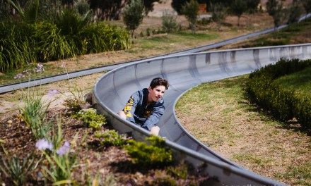 Tobogganing at Cool Runnings in Cape Town
