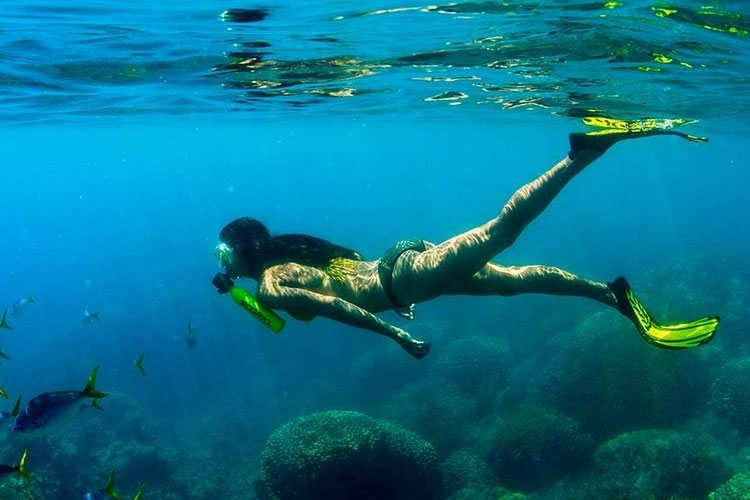 BREATHE UNDERWATER WITH TOTAL FREEDOM - The Rebel Dandy