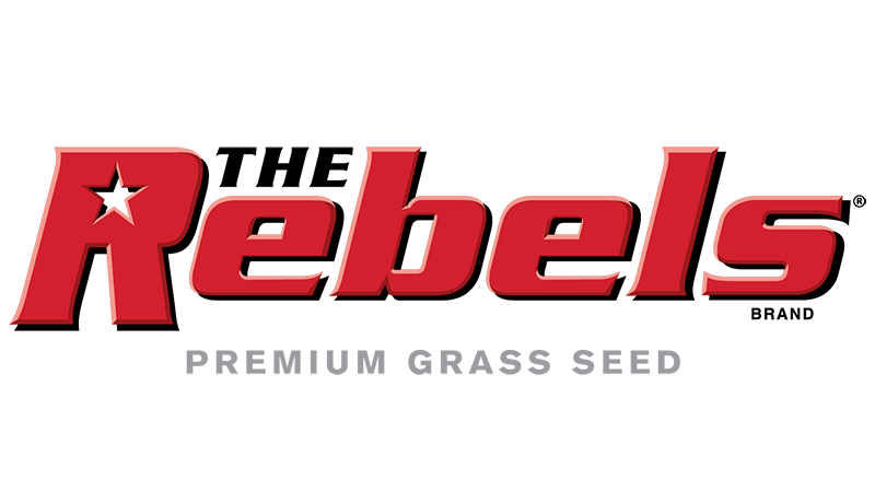 Does Grass Seed Expire Wiki
