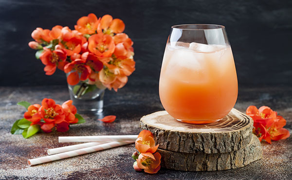 Summer Punch Recipe