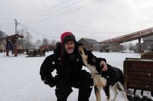 friendly huskies