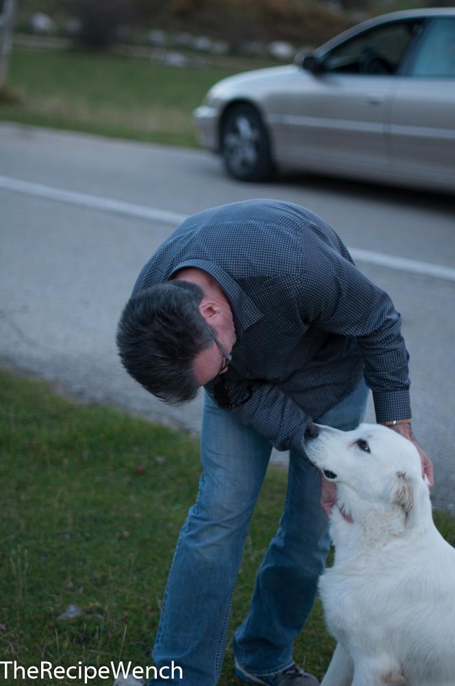 Friendly Mama Dog and Jeff