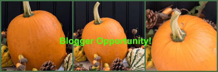 blogger opportunity