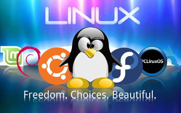 Linux Distros Tux