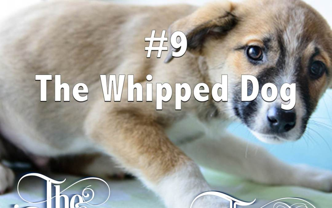 Episode 9 – The Whipped Dog
