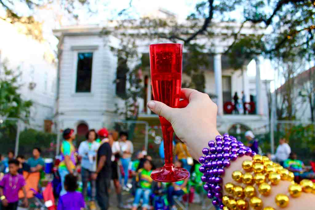 MY EXPERIENCE AT MARDI GRAS | THE REPUBLIC OF ROSE