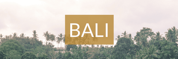 BALI | The Republic of Rose