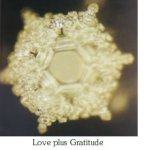 Emoto Love plus Gratitude