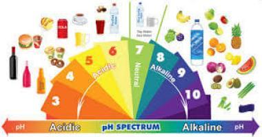 pH-food-image1 Opt