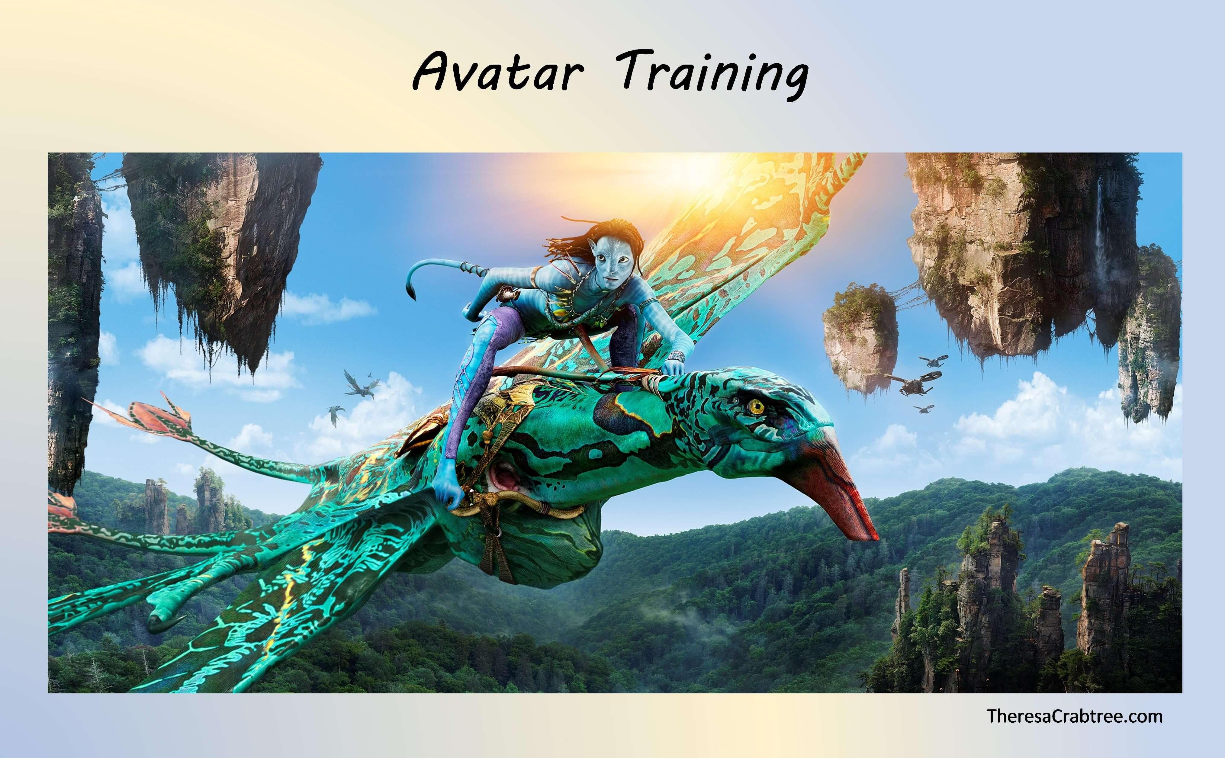 Soul Connection 255 ~ Avatar Training