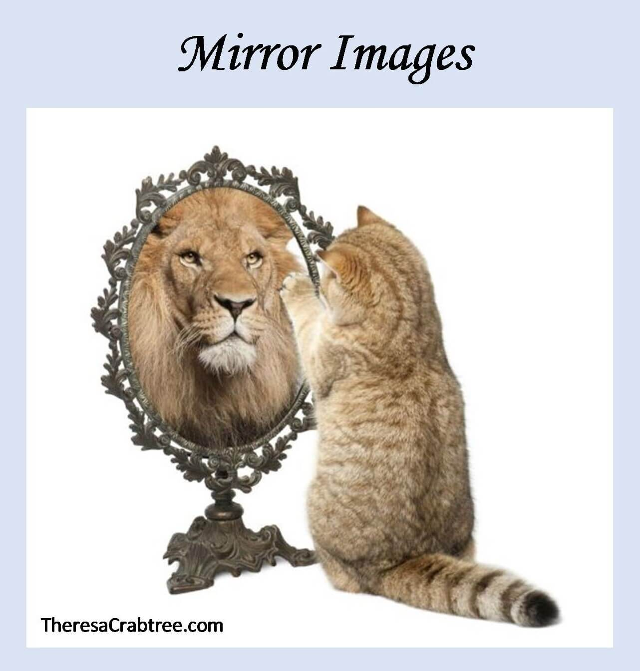 Soul Connection 102 ~ Mirror Images