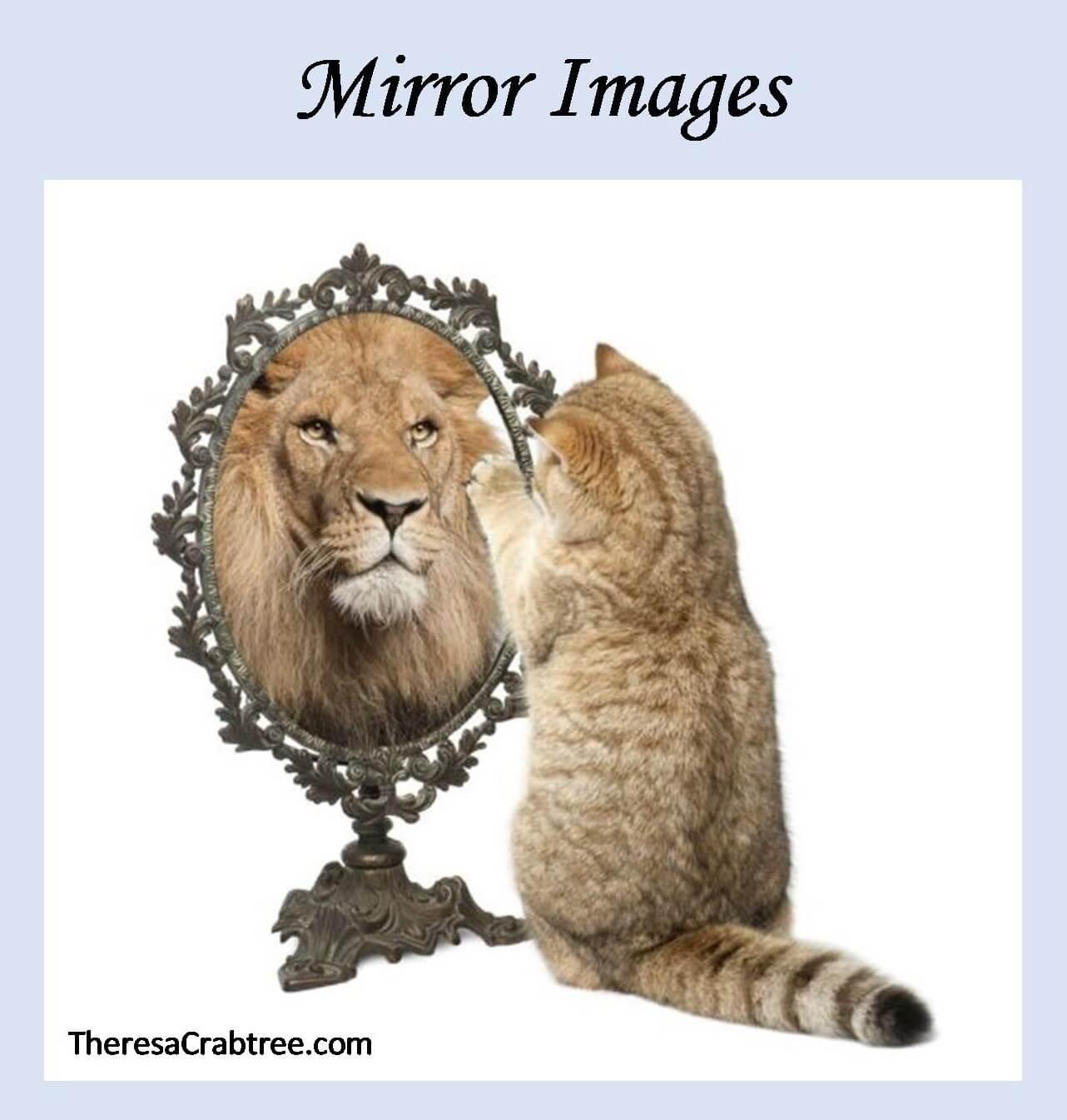 Soul Connection 272 ~ Mirror Images