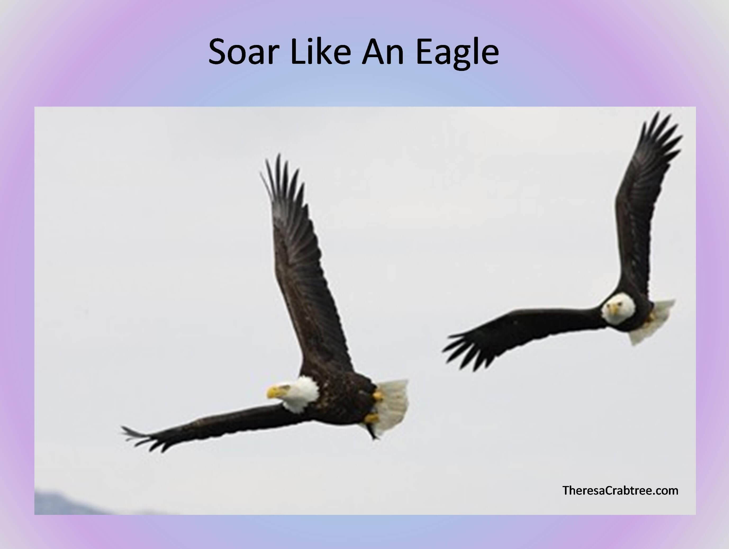 Soul Connection 19 ~ Soar Like an Eagle