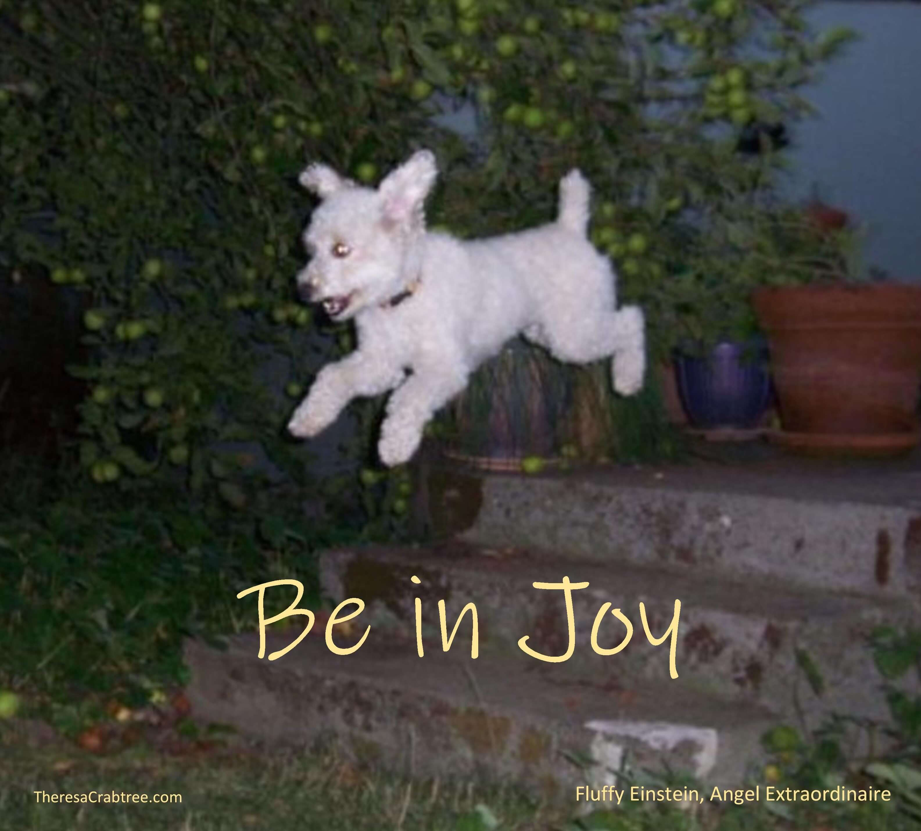 Soul Connection 97 ~ Be in Joy