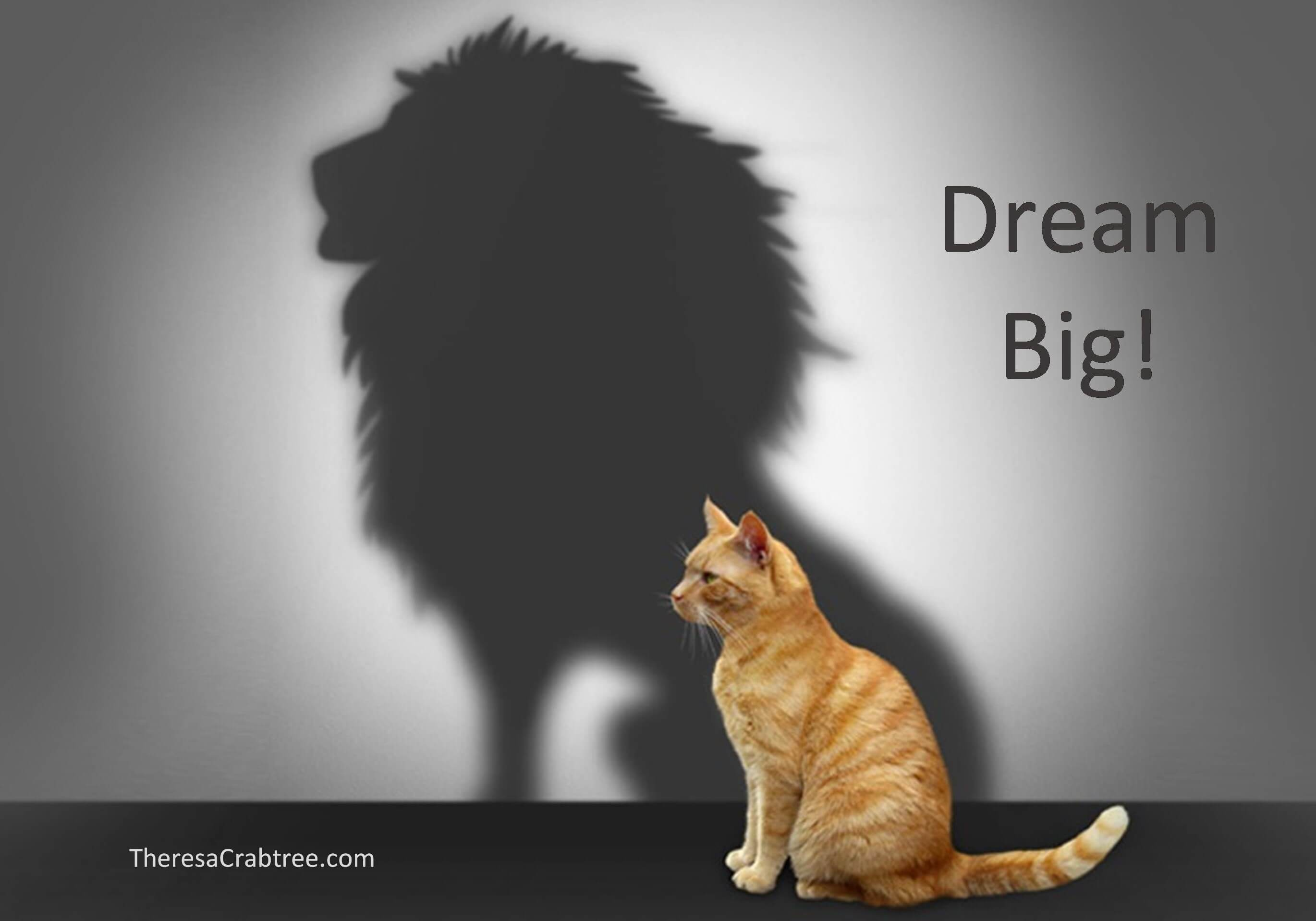 Prepare to Dream Big!