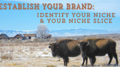 Establish Your Brand: Identify Your Niche & Your Niche Slice – The Branding Pen Article 6