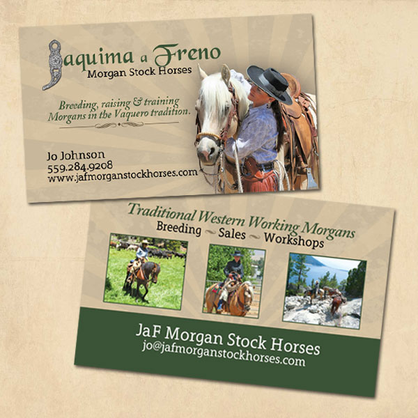 JaF Morgan Stock Horses