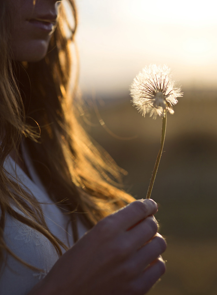 08 May 2014 --- Woman Holding Dandelion --- Image by © Blossom Peaches/ableimages/Corbis