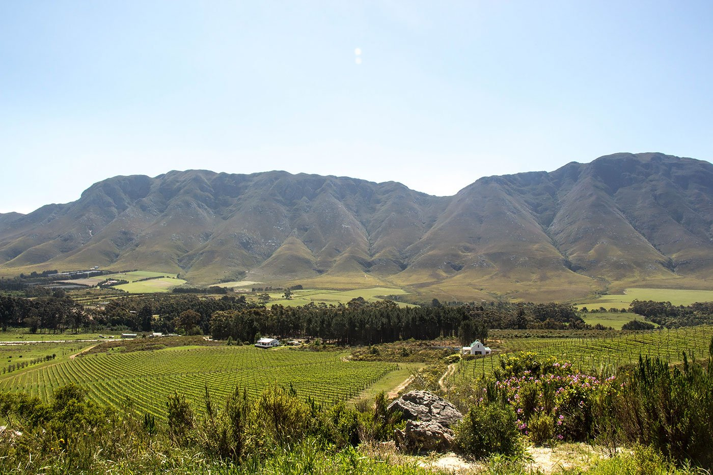 Wine and Wildlife: 3 Day Trips From Cape Town - View from the restaurant at Spookfontein.